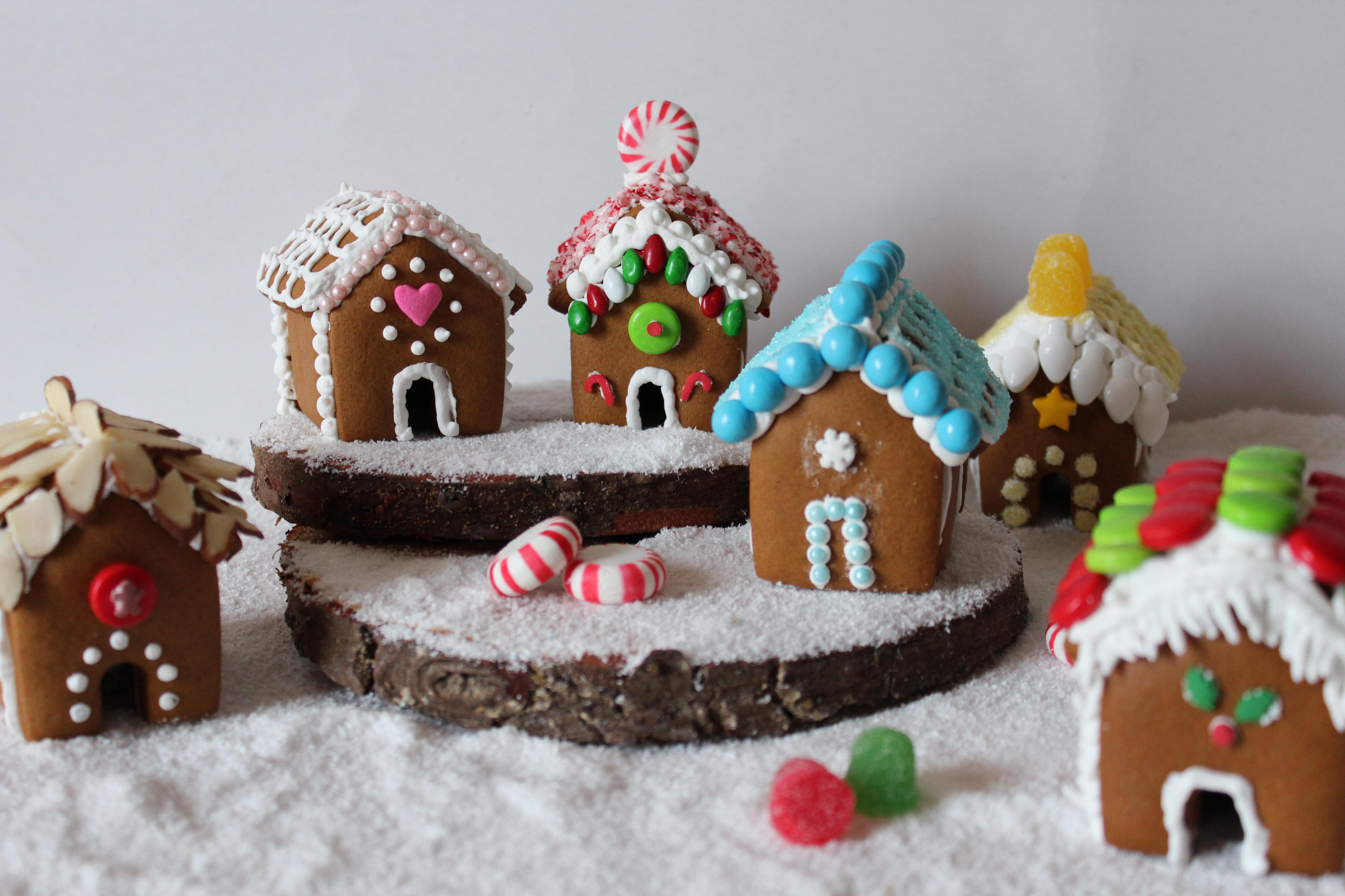 recipe: small gingerbread house recipe [19]